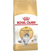 Royal Canin FBN Norwegian Forest Cat 2kg