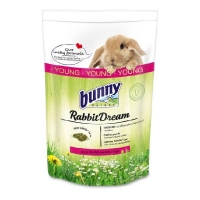 Bunny Rabbit Dream Young